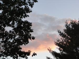 Evening sky3